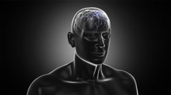 3D Human torso with brain and neurons flashing. Loopable. Dolly in. - stock footage