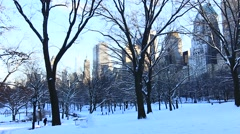 Central Park in Snow Stock Footage