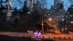 Central Park at Dusk Stock Footage