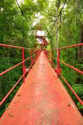 Bridge to the jungle,Trang,Thailand Stock Photos