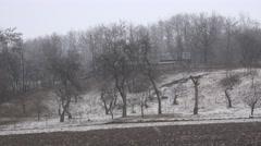 4K Heavy snow fall rural farm land organic orchard tree winter season blizzard  Stock Footage