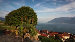Vineyards of the Lavaux region Stock Footage