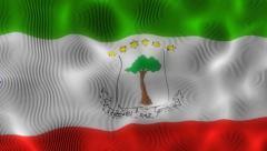 Waving Flag Equatorial Guinea Stock Footage