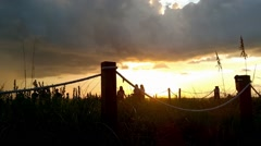 People watching sunset on Captiva Stock Footage