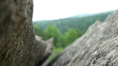 Focus change of rock in Shenandoah national park Stock Footage