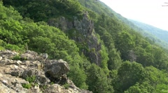 Shenandoah national park forest  and cliffs Stock Footage