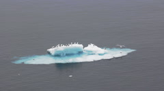 Summer floating ice in the Barents sea Stock Footage