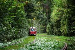 red tram rides through the trees in park - stock photo