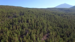 Aerial footage of Teide Stock Footage