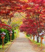 Stairway to chureito pagoda in autumn, Fujiyoshida, Japan Stock Photos