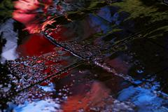 Reflection in a puddle after rain advertising Stock Photos