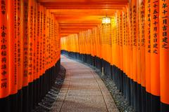 Torii gates, Fushimi Inari Shrine, Kyoto, Japan - stock photo