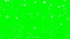Winter snow fall - seamless loop, green screen - stock footage