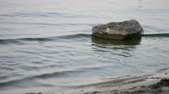 Water surface with small waves and stone Stock Footage
