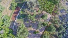Field on island Mljet, aerial Stock Footage
