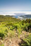 Plateau Paul da Serra in Madeira island - stock photo