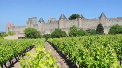 Vineyards near the Cite in Carcassone - stock footage