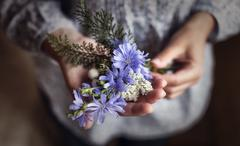 Hands girl with flowers Stock Photos