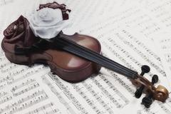 old violin with musical notes and rose - stock photo