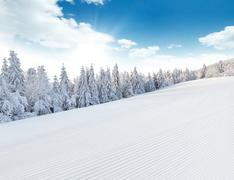 Winter snowy landscape Stock Photos