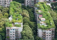 Chengdu - Buildings and vegetation - stock photo
