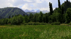 Snow mountains alpine meadow in Ili River Valley Stock Footage