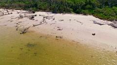Couple walking a dog on a driftwood beach by a an ocean lagoon - stock footage