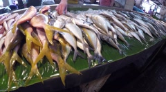 Fish laid on wet market stall Stock Footage