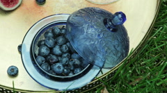 autumnal still life with blueberry 6 - stock footage