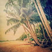 Coconut palm tree on sand beach with vintage tone. Stock Photos
