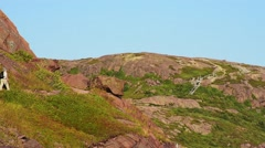 Hiker on the Signal Hill Trail Stock Footage