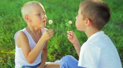 Two boys dressed in white, blowing dandelions on each other laugh in the park Stock Footage
