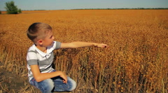 8 years old boy sitting near the flax field and moves his hand over twigs Stock Footage