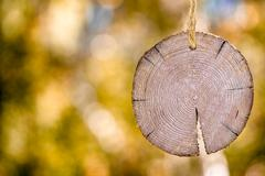 Wooden signboard on a rope - stock photo