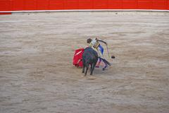 Bullfighter angers the bull to show its temper and character - stock photo