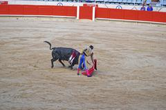 Bullfighting show at its height Stock Photos