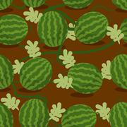 Water-melon plantation seamless pattern. Fruity vector background. Texture pl - stock illustration
