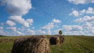 Stock Video Footage of Hay bales field against lone tree