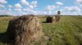 Hay bales field against lone tree Footage