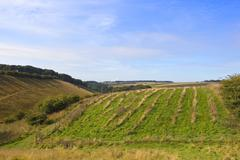 Scenic yorkshire wolds Stock Photos