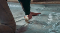 Floor Insulation With Styrofoam Before Concreting Stock Footage