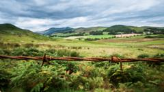 Scenic Lanscape With Barbwire Stock Photos
