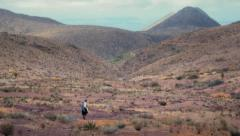 Nomad crossing desert Stock Footage