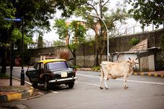 Mumbai Street Scene - stock photo