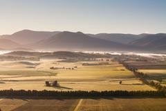 Yarra Valley View - stock photo