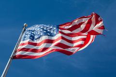 USA Flag Kuvituskuvat