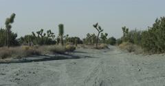 Abandoned desert in Joshua Tree Stock Footage