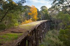 Old Trestle Bridge in Koetong Stock Photos
