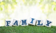 FAMILY sign made of wooden blocks on a green grass - stock photo
