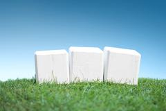 Stock Photo of Wooden blocks on a green grass, plain white